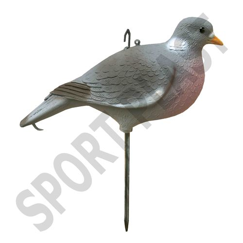 WOOD PIGEON LOW COST small