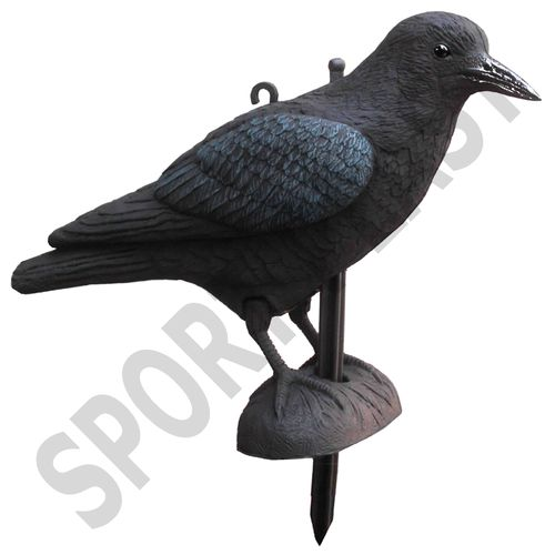 CROW with legs and stake
