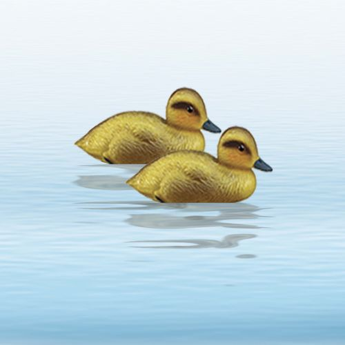 Floater Yellow Duckling