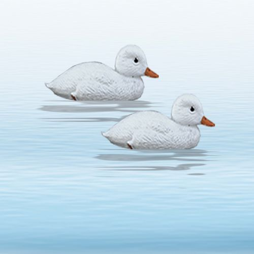Floater White Duckling